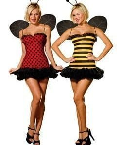 Dreamgirl Women's Reversible Bumble Bee/Lady Bug Costume
