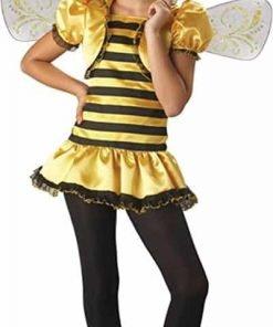 BOS Preteen Honey Bee Costume Size: Preteen 12-14