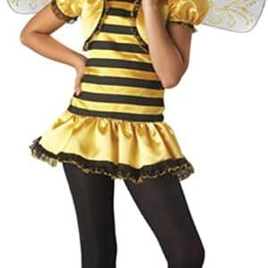 BOS Preteen Honey Bee Costume Size: Preteen 12-14