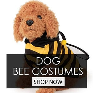 Dog Bee Costume